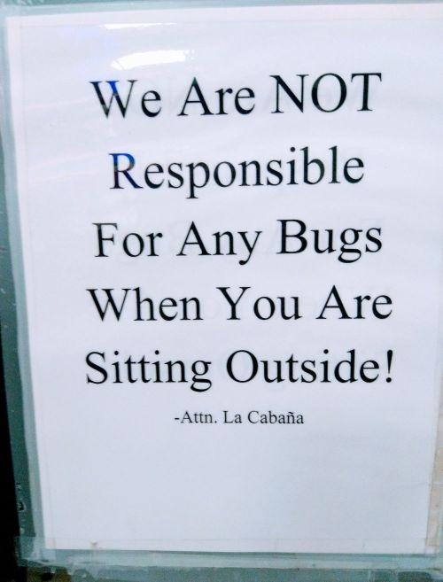 bugs_outside