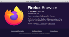 Firefox web browser v.73