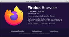 Firefox web browser v.73