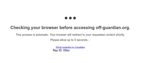 screenshot showing cloudflare delaying a website visit